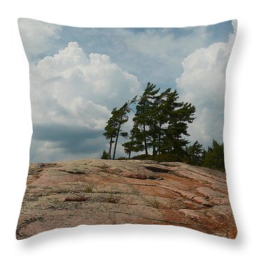 Wind Swept Trees On Rocks Throw Pillow