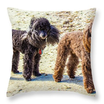 Windblown Beach Bums Throw Pillow