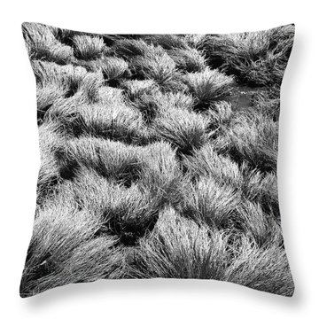 Windblown Grass Throw Pillow