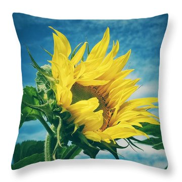 Throw Pillow featuring the photograph Windblown  by Karen Stahlros