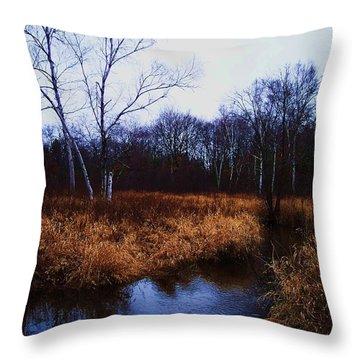 Winding Creek 2 Throw Pillow by Anna Villarreal Garbis