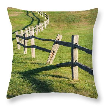 Winding Fences Throw Pillow