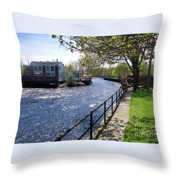 Winding River Throw Pillow