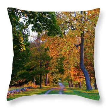 Winding Road In Autumn Throw Pillow