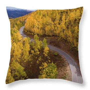Winding Through Fall Throw Pillow