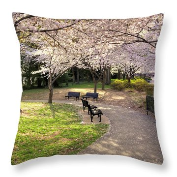 Winding Trail To The Tidal Basin Throw Pillow