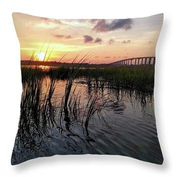 Winding Wando Throw Pillow