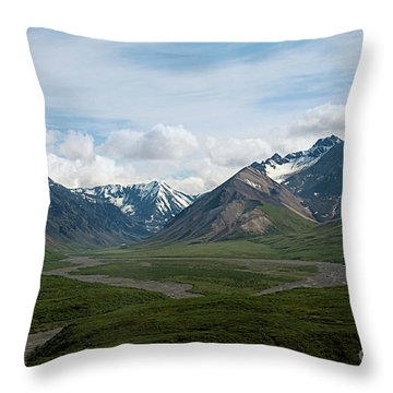 Winding Water Ways Throw Pillow