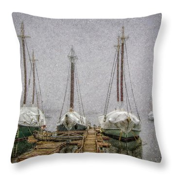 Windjammers In Winter Throw Pillow