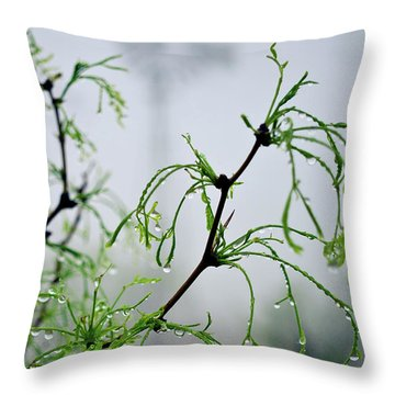 Windmill In The Mist Throw Pillow
