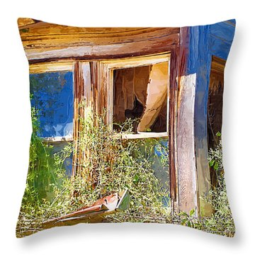 Throw Pillow featuring the photograph Window 2 by Susan Kinney