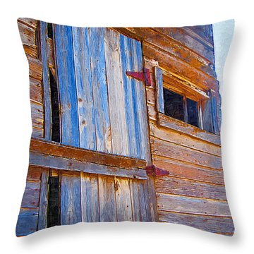 Throw Pillow featuring the photograph Window 3 by Susan Kinney