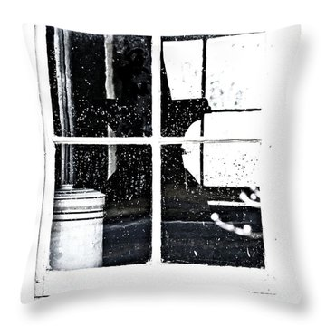 Window 3679 Throw Pillow