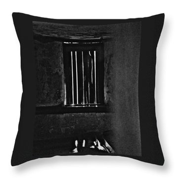 Window 3776 Throw Pillow