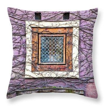 Window And Vines - Prague Throw Pillow