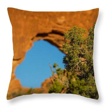 Window Arch Throw Pillow