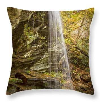 Window Falls In The Autumn Throw Pillow by Bob Decker