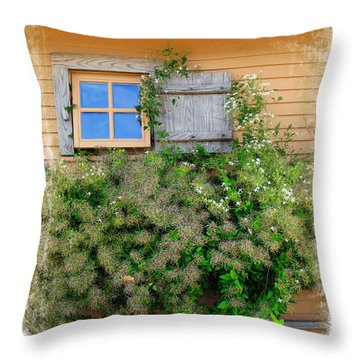 Throw Pillow featuring the photograph Window Floral In Plymouth by Joan  Minchak