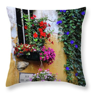 Window Garden In Arles France Throw Pillow