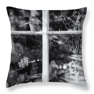 Window In Black And White Throw Pillow