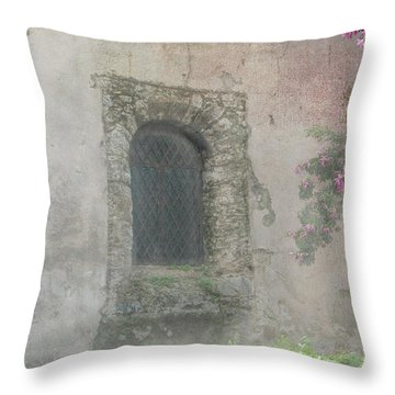 Window In The Wall Throw Pillow