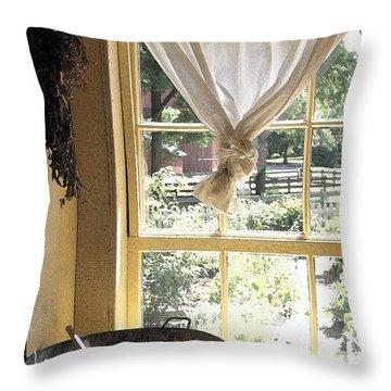 Window On Yesterday Throw Pillow
