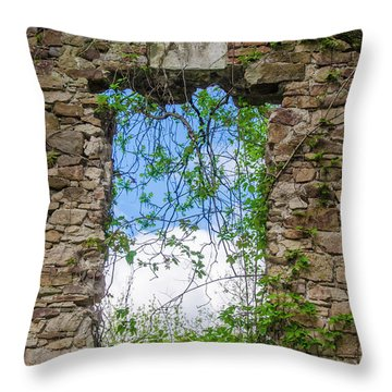 Throw Pillow featuring the photograph Window Ruin At Bridgetown Millhouse Bucks County Pa by Bill Cannon