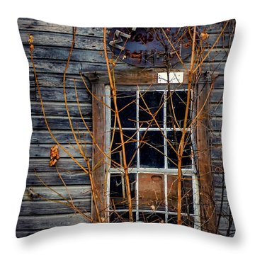 Throw Pillow featuring the photograph Window Shopping by Kendall McKernon