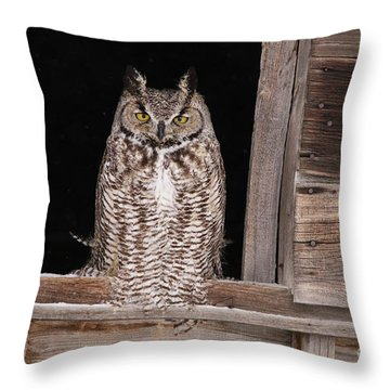 Window Sitting Throw Pillow