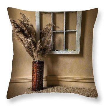 Window To Nowhere Throw Pillow