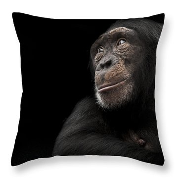 Window To The Soul Throw Pillow by Paul Neville
