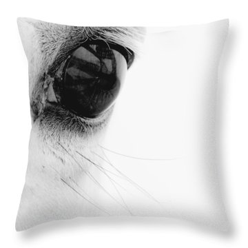Equine Throw Pillows