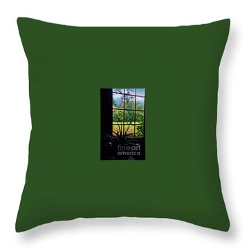 Window View On A Rainy Day Throw Pillow