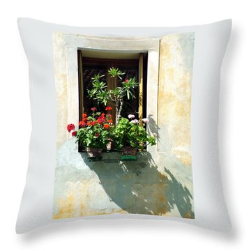Throw Pillow featuring the photograph Window With A Tree by Donna Corless