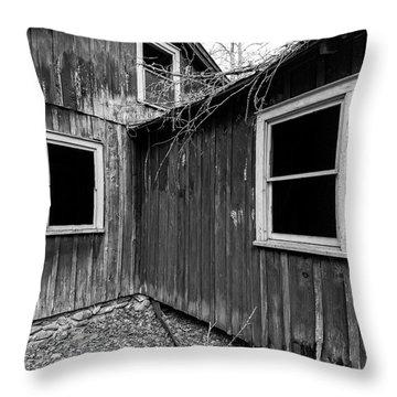 Throw Pillow featuring the photograph Windows 3 by Alan Raasch