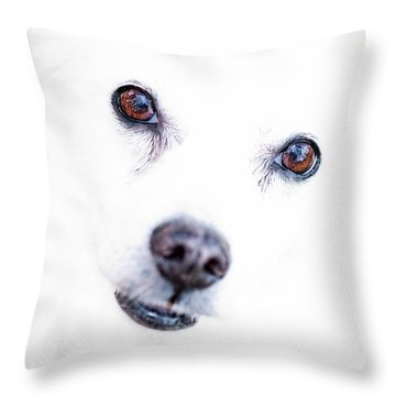 Throw Pillow featuring the photograph Windows To The Soul by Lara Ellis