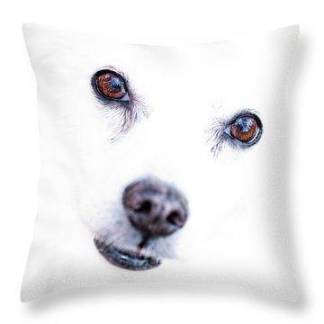 Windows To The Soul Throw Pillow