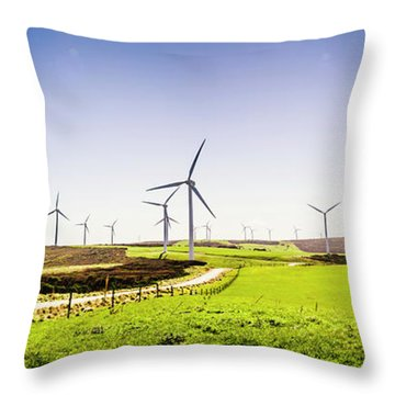 Winds From West Woolnorth Throw Pillow