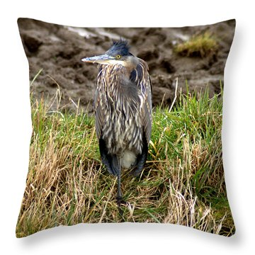 Windswept Heron Throw Pillow