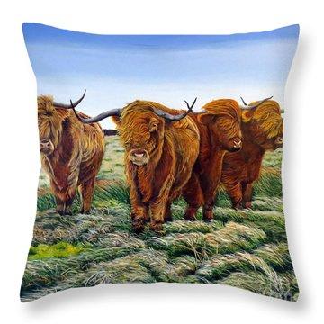 Windswept Highland Cattle  Throw Pillow