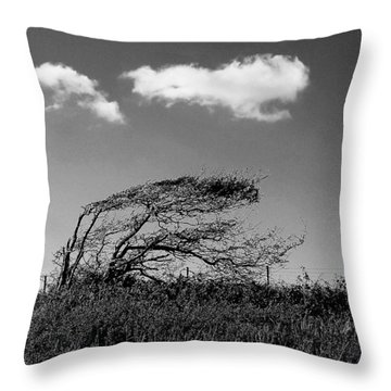 Throw Pillow featuring the digital art Windswept by Julian Perry