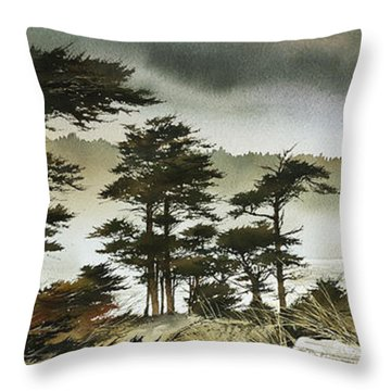 Windswept Shore Throw Pillow by James Williamson