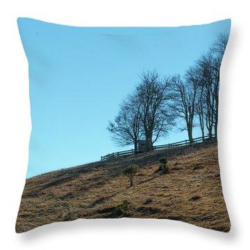 Windswept Trees - December 7 2016 Throw Pillow