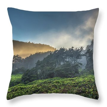 Windswept Trees On The Oregon Coast Throw Pillow