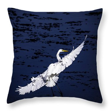 Windy Flight Throw Pillow