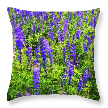 Windy Lupines By Brad Scott Throw Pillow