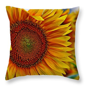 Windy Sunflower Field Throw Pillow