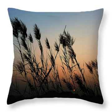 Windy Sunset Throw Pillow
