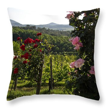 Wine And Roses Throw Pillow by Roger Mullenhour