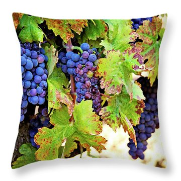 Wine Country - Napa Valley California Photography Throw Pillow